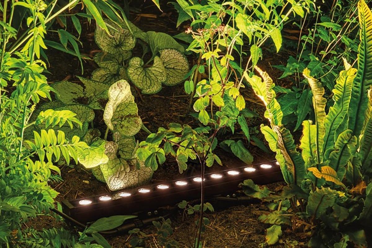 Sus Light verlichting koop je bij Lightboxx