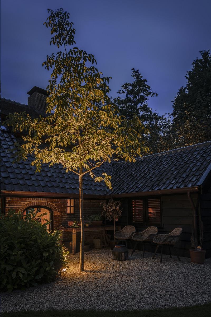 Bomen aanlichten met grondspots